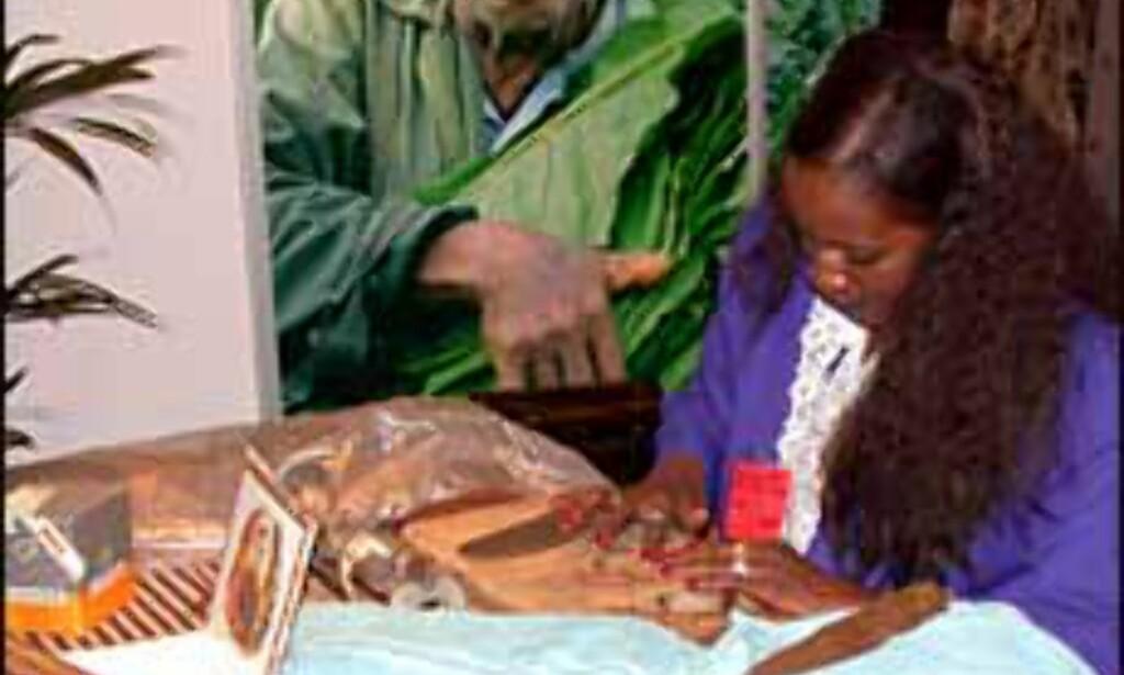 Fra reiselivsmessen 2002. Rulling av cubanske sigarer.