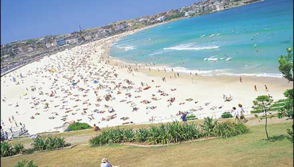 <I>Foto: Courtesy Tourism New South Wales</I> Foto: Courtesy Tourism New South Wales