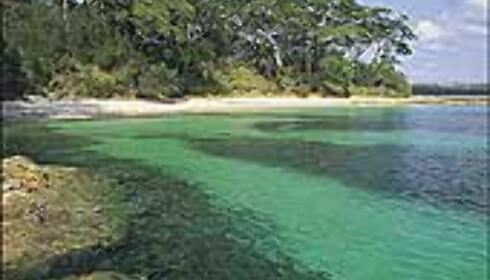 Sydkysten er mye mindre besøkt enn kysten nord for Sydney, men ikke la det lure deg til å styre unna. Her et bilde fra Jervis Bay, Shoelhaven. <I>Foto: Courtesy Tourism New South Wales</I>  Foto: Courtesy Tourism New South Wales
