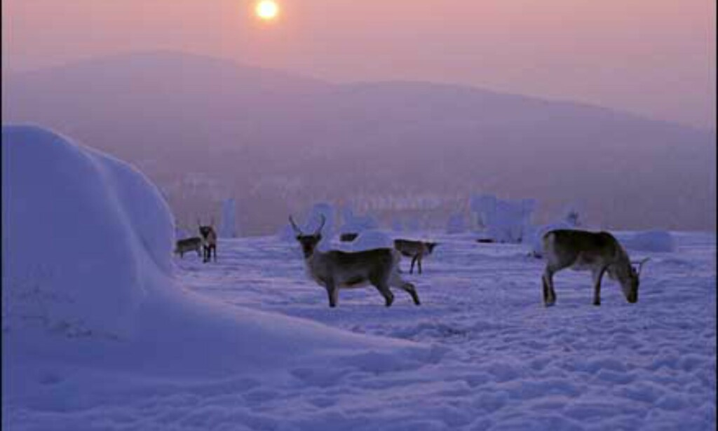 Foto: Comma Pictures/Finlands Turistkontor Foto: Comma Pictures/Finlands Turistkontor
