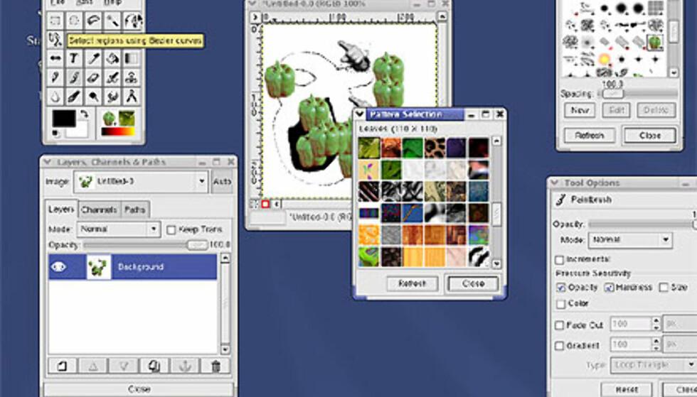 Et av de beste bildebehandlingsprogrammene for Linux følger med gratis når du velger Desktop-installasjon. The Gimp.