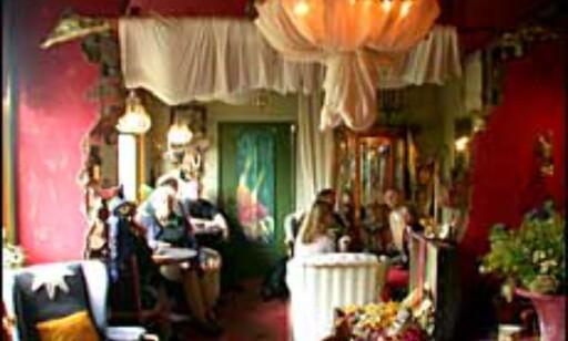 Hjemmehygge, hekser og trollerier på det magiske hotellet De Tovenaarsberg.