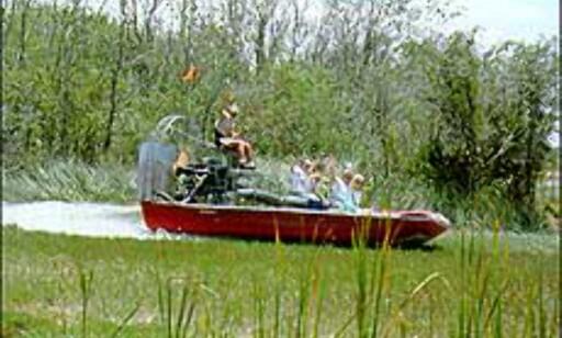 Ved Fort Lauderdale kan du finne veien ut i sumpene med båt. Foto: Sunny.org