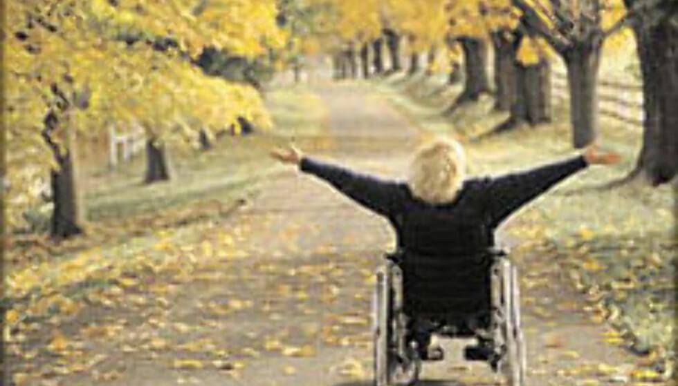 Ferie med rullestol krever ekstra planlegging. Foto: Turismforalla.se/Semesterguiden 2003