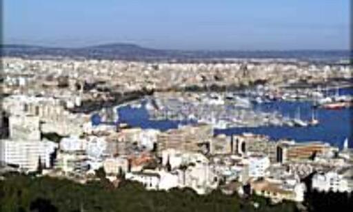 Mallorca for 995,-