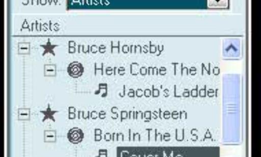 Favorittsangene dine kan du lagre i et eget bibliotek, som blir tilgjengelig fra hvor som helst