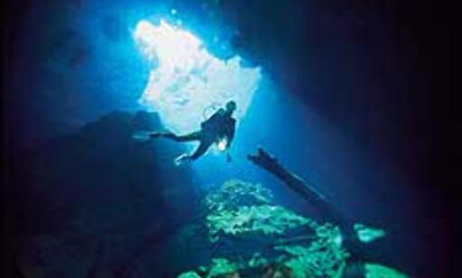 Ordet krystallklart er ikke misbrukt når man snakker om vannet i grottene på Yucatan. Copyright: NaturEventyr