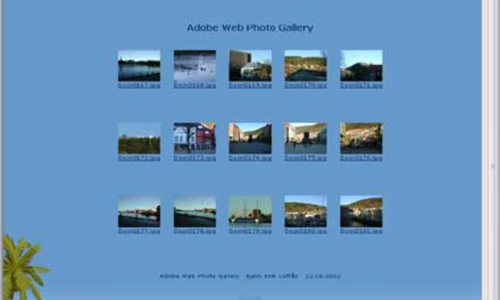 Med funksjonen Web Photo Gallery kan du enkelt lage en hjemmeside med bilder. Kilden kan være en filmappe på harddisken fylt med bildefiler. Komprimering, plassering etc tar Photoshop Elements seg av.