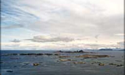 Velkommen til øyhopping langs Helgelandskysten!