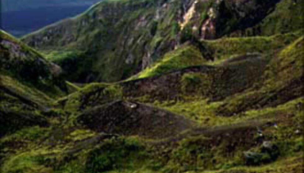 De eldste kraterne er dekket av vegetasjon. Dette er fra toppen av Gunung Batur. Foto: Kirsti van Hoegee Foto: Kirsti van Hoegee