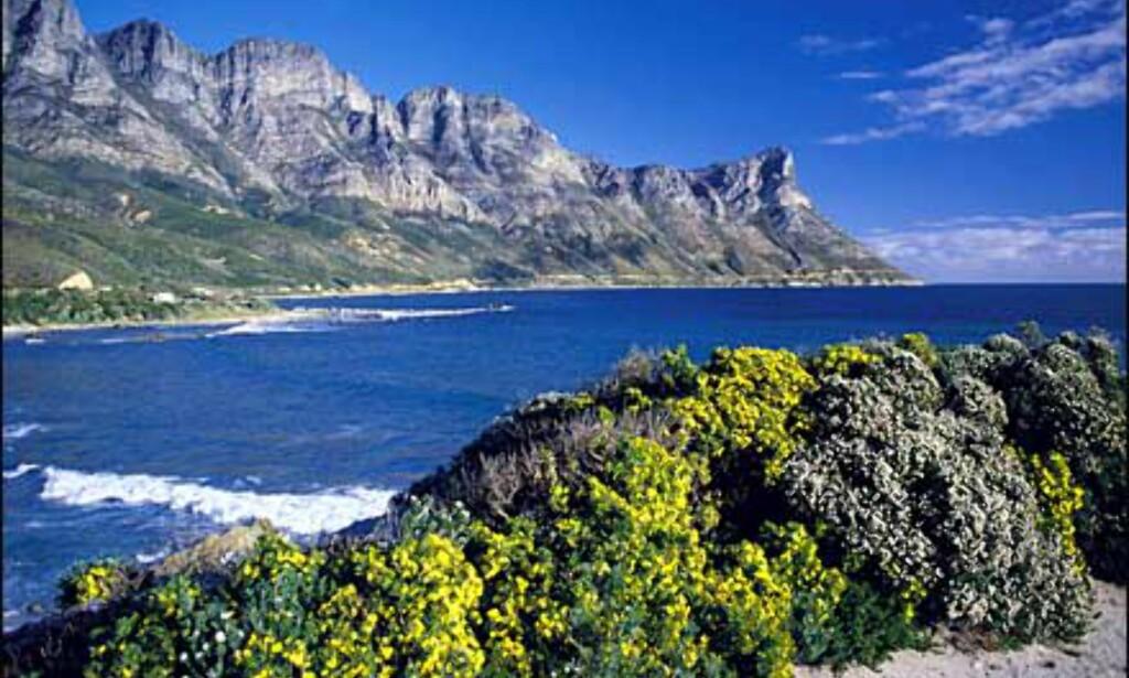 Foto: Hein von Hörsten/South African Tourism Foto: Hein von Hörsten/South African Tourism