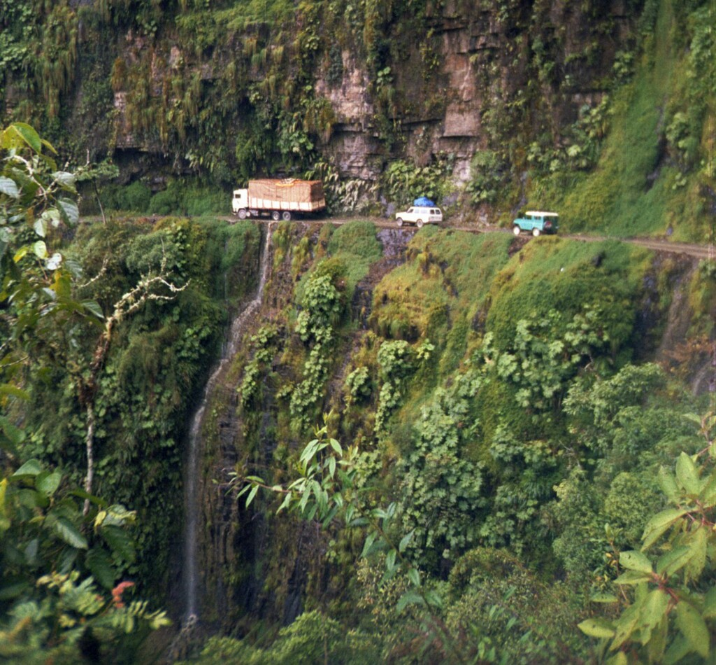 Caminas de las Yungas Foto: Wikimedia