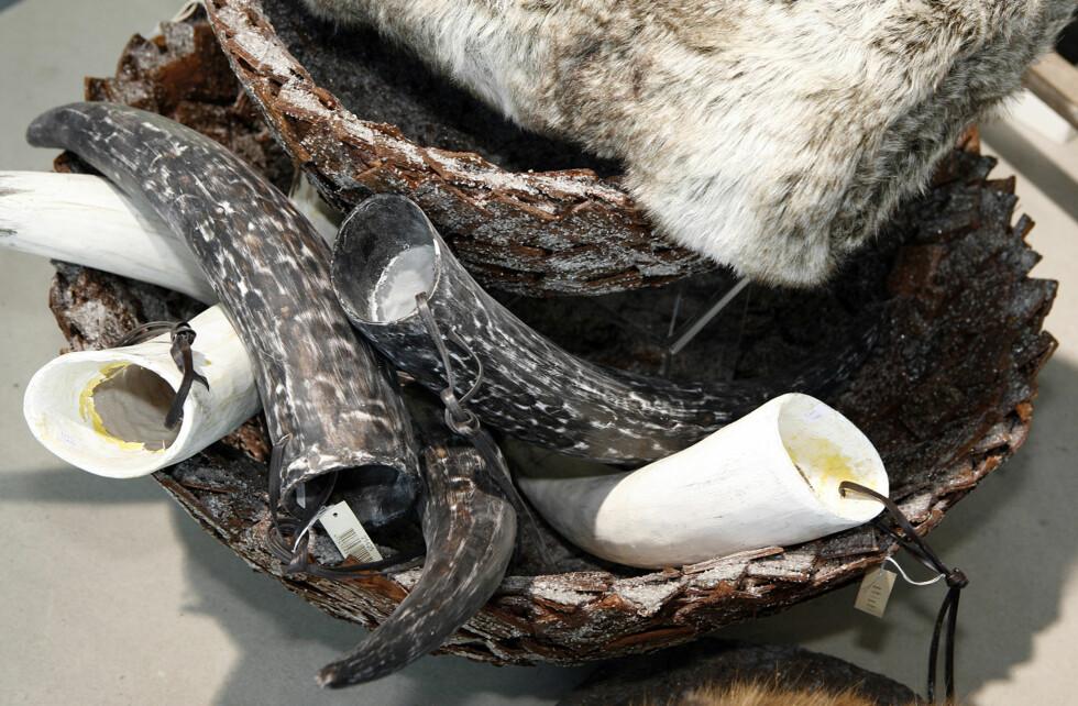 Horn, pelspute og kurv fra ShiShi. Foto: Per Ervland