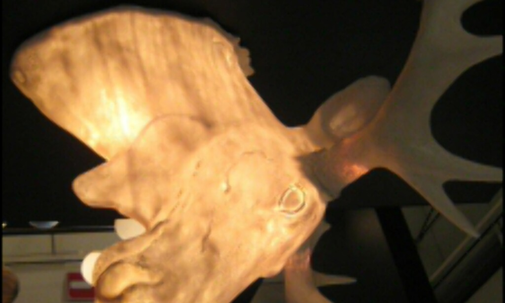 Lampen Moo fra Northern Lighting.