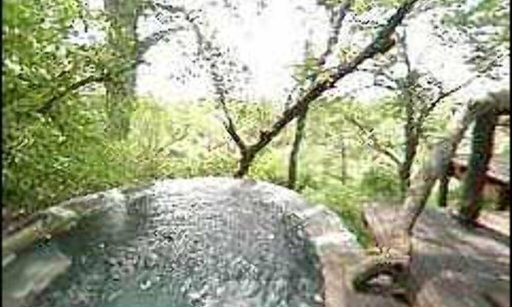Bassenget på Londonozi Private Game Reserve i Sør-Afrika.