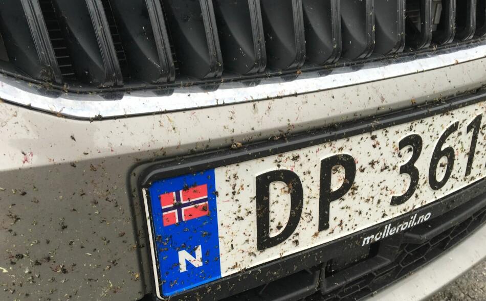 MYGGFANGER: Støtfangeren er også en effektiv myggfanger. Slik så den ut på vår bil etter kjøreturen mellom Tromsø og Haparanda i sommer. Foto: Bjørn Eirik Loftås