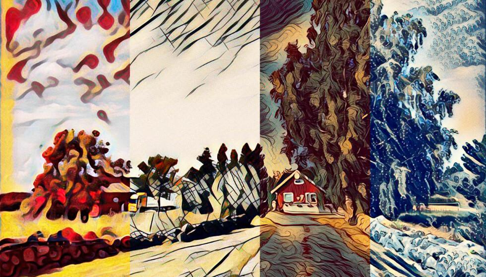 MANGE VARIANTER: Med Mac-appen Style kan du lage kunstverk både av bilder og video. Foto: Pål Joakim Pollen