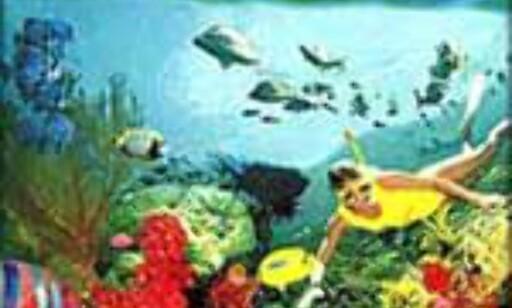 Akvarium i gigantformat...
