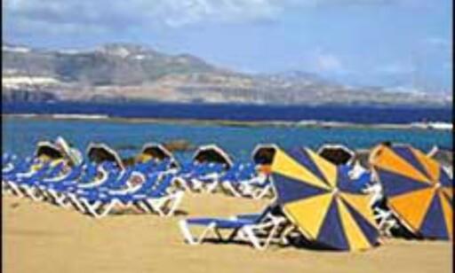 Strandsafari på Gran Canaria for 1.500 kroner - fra Sverige. Foto: Star Tour