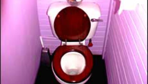 Toalettet som et fargerikt lyspunkt ...