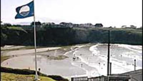 Slik ser flagget ut, som markerer rene og miljøvennlige strender.<br /> <I>Foto: Blue Flag</I>  Foto: Blue Flag