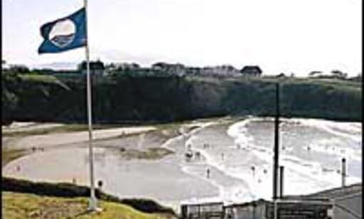 Slik ser flagget ut, som markerer rene og miljøvennlige strender. Foto: Blue Flag  Foto: Blue Flag