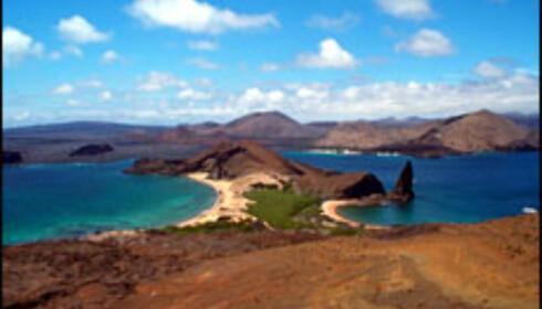 Galápagosøyene, en av verdens beste øyer ifølge Travel + Leisure. Foto: Agnes Gram