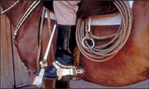 Gaucho, den argentinske cowboyen, lever.  Foto: Secretaría de turismo presidencia de la nación