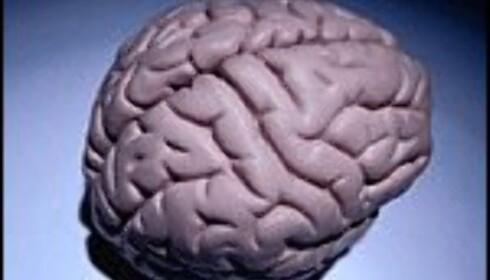 Test IQ'en din