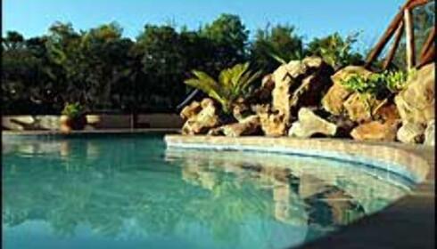 Messetilbud fra reiselivsmessa til for eksempel Matswani Safari Lodge i Sør-Afrika. Foto: Matswani Safari Lodge/Store Verden Foto: Matswani Safari Lodge/Store Verden