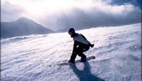 Det er fremdeles en og en halv måned igjen av sesongen på de fleste skisentrene, og det er mange gode tilbud å hente på skipakker.