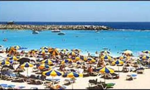 Amadores er en av strendene på Gran Canaria som kan vise til Blått flagg. Foto: playa-amadores.com Foto: Playa-amadores.com