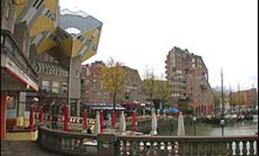 Kubene henger over serveringsstedene i Oude Haven.