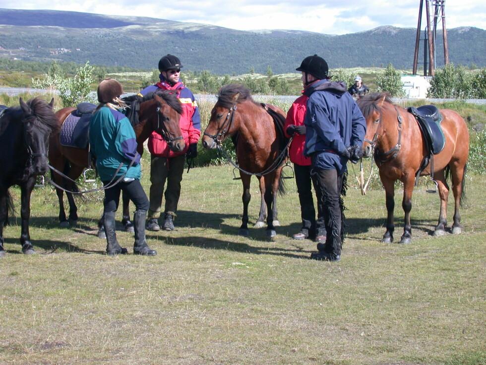 Rytterne utveksler erfaringer og strekker på beina i en pause. Hestene venter tålmodig på at neste etappe skal begynne.   Foto: Stine Okkelmo