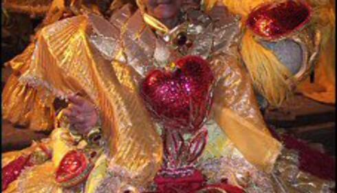 Det er bare de eldre kvinnene som får lov å bære de flotte koloniinspirerte kjolene og være snurrende baianas i paraden.