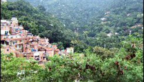 Favelaen har utsikt over luksusåsen der fiffen bor mellom trærne.