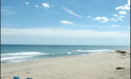 Svertehavskysten har noen strandperler til å drømme om.