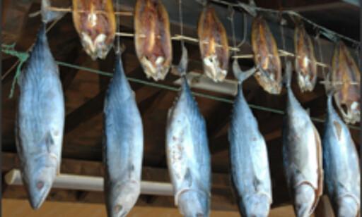 Kostholdet i Bulgaria er ganske enkelt, men ofte vellsmakende.