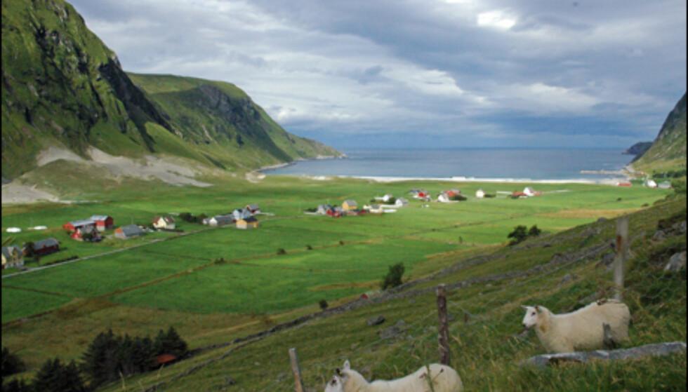 Hoddevika(på bildet)og nabostranden, Ervika, er Stad sine mest kjente surfesteder.
