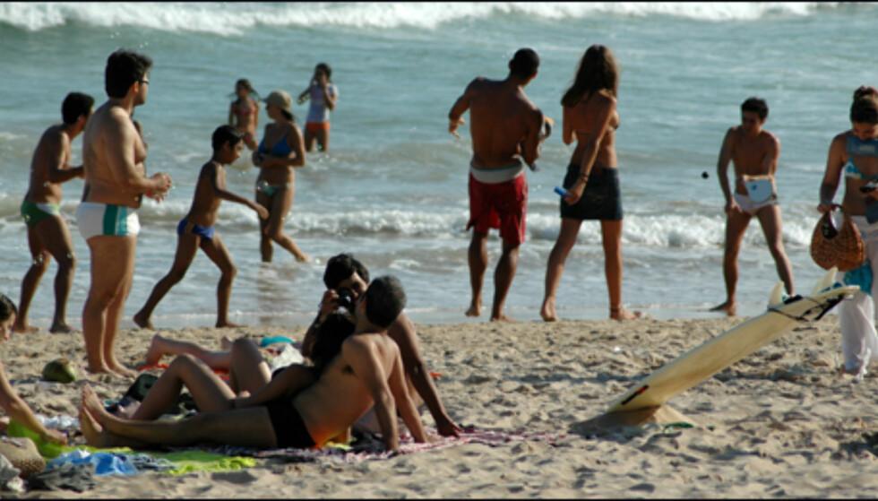 Sambacharter i Brasil