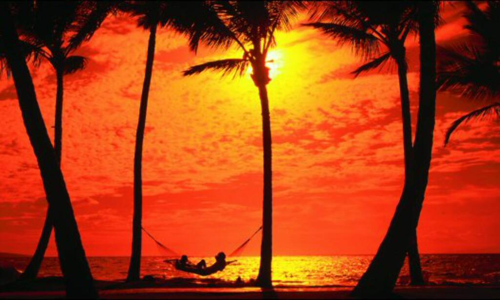 I den hengekøya skulle du vel gjerne ligget? Her fra solnedgangen over Waileastranden, på øya Maui. Foto: Ron Dalquist/Hawaii Visitors and Convention Bureau