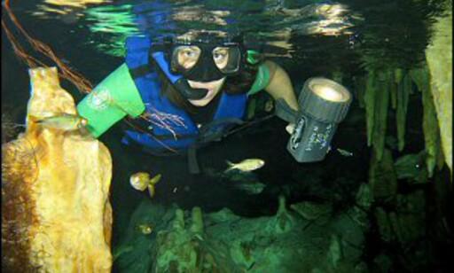 Har du ikke dykkelappen, kan du snorkle i stedet. Foto: Marc Torrecillas