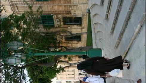 Maltesere er katolikker, og ikke sjelden ser du en nonne vandre forbi i Valletta. Foto: Marte Okkelmo