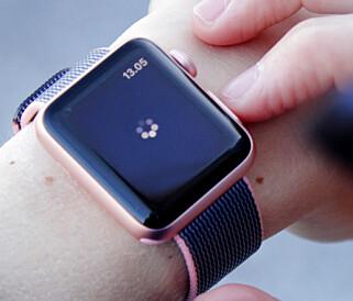LITT VENTETID: Det er fremdeles litt ventetid på appene, men ikke så mye som før. Snurrehjulet hører mer til sjeldenhetene. Foto: Ole Petter Baugerød Stokke