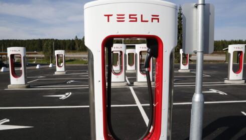PÅ E6: 31. august åpnet Tesla verdens største superlader-stasjon for elbiler på Nebbenes. Foto: Henrik Skolt / NTB scanpix