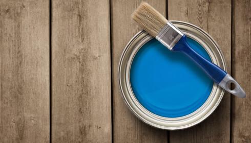 ROBUST: Gulvet skal tåle mye juling og trenger maling som tåler slitasje. Gi malingen ekstra god tid til å herde, så varer den lengre. Foto: NTB Scanpix