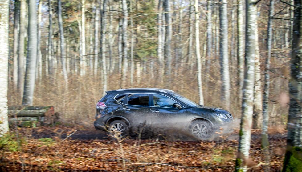 SKOGENS KONGE: Jo da, en bil som X-Trail kan være i stand til mye. Foto: Produsenten