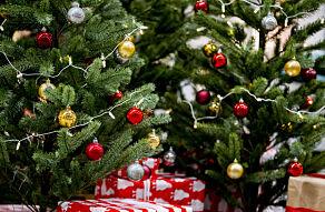 image: Slik holder du juletreet vakkert hele jula