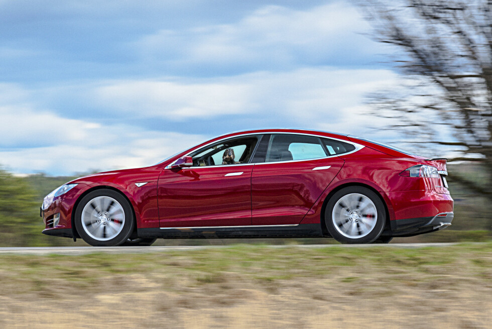 EVERY DOG HAS IT'S DAY: The Tesla Models S proves that you can teach an old dog new tricks. Soon, mans best friend, could be mans best chauffeur. Leaving you to chase your tail ...   Foto: Jamieson Pothecary / Autofil