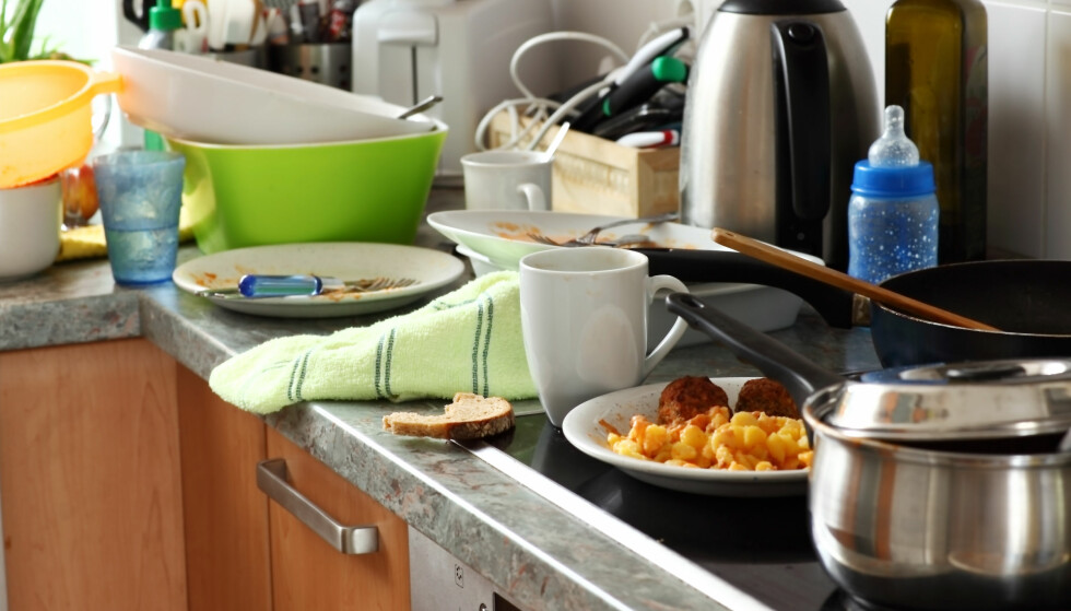 VASK BORT SMULER OG RESTER: Insektet livnærer seg blant annet på gamle matrester, noe som gjerne skjuler seg bak komfyren i huset. God grunn til å ta en skikkelig nedvask, altså. Foto: NTB Scanpix